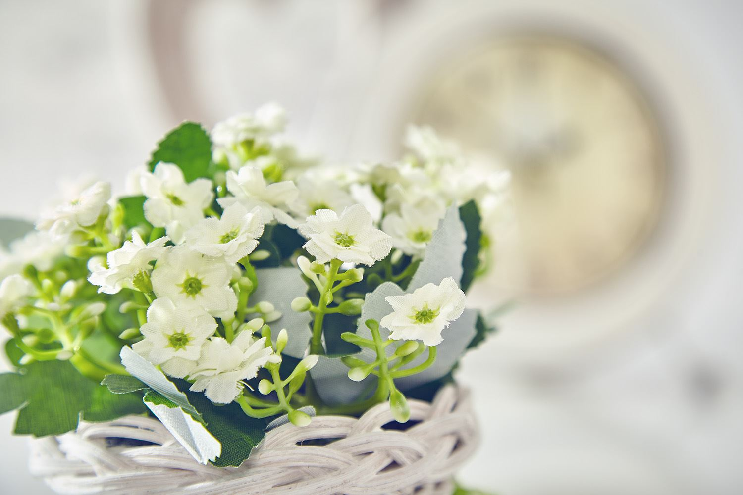 Artificial Forget Me Not Flowers Plants In Basket Home Wedding