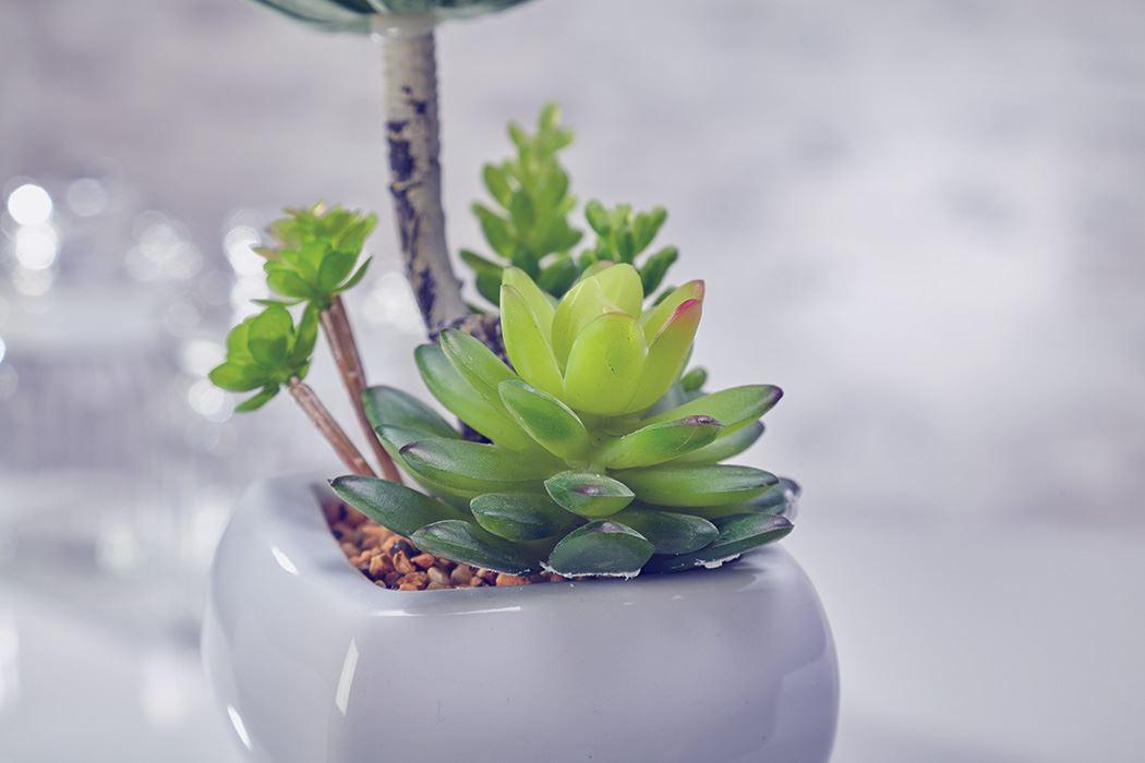 Flores artificiales cactus plantas en maceta decoraci n for Plantas decorativas artificiales df
