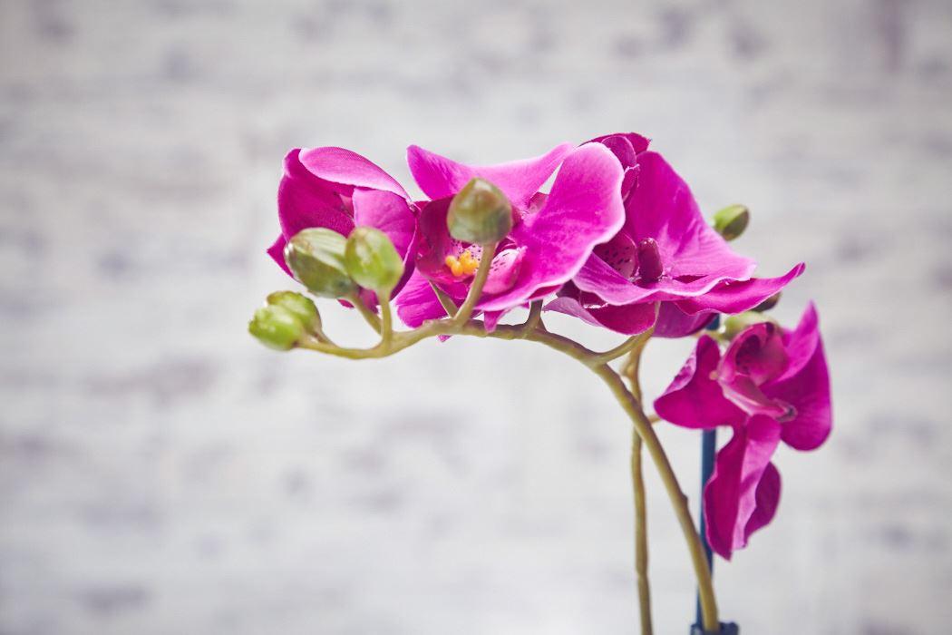 Artificial Flowers Plants Garden Home in Plastic Pot