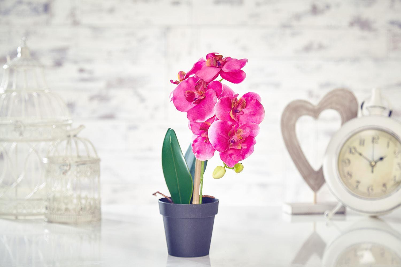 Artificial Orchid Flowers Plants in Pot Home Decor Garden Fuchsia ...