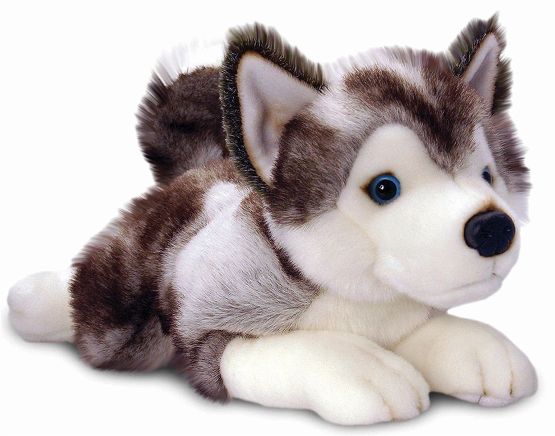 Best Dog Interactive Toy For Kids