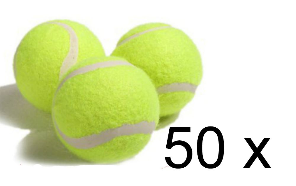 10 x AQS Coloured Tennis Balls For Pets Puppy Play Dog Toys Bouncing Ball New