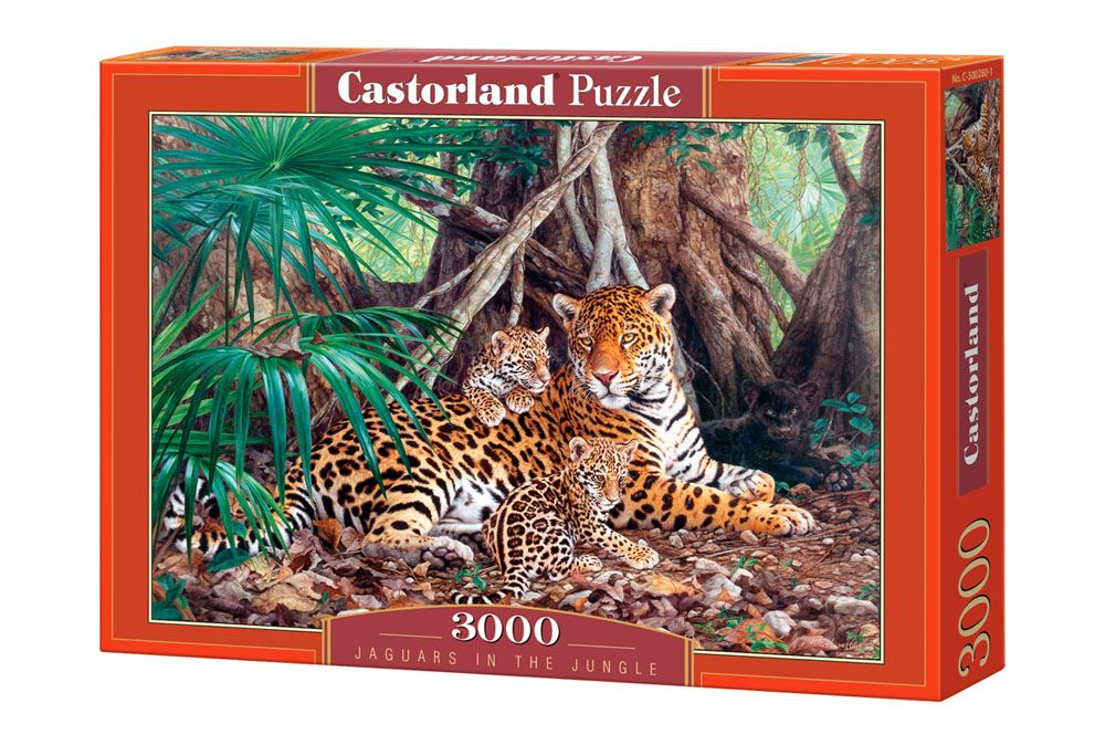 Castorland-3000-Piece-Jigsaw-Puzzle-Landscapes-Cities miniatuur 21