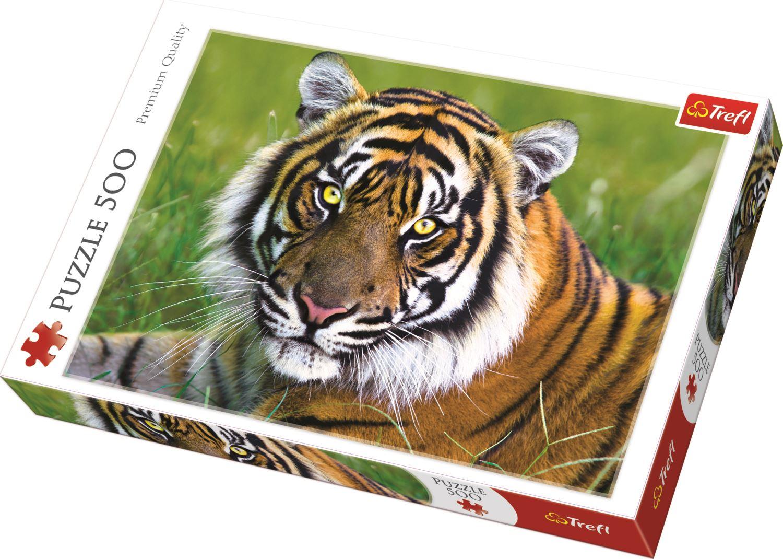 Trefl-300-500-1000-1500-2000-3000-4000-6000-Piece-Jigsaw-Puzzle-Landscapes-City thumbnail 414