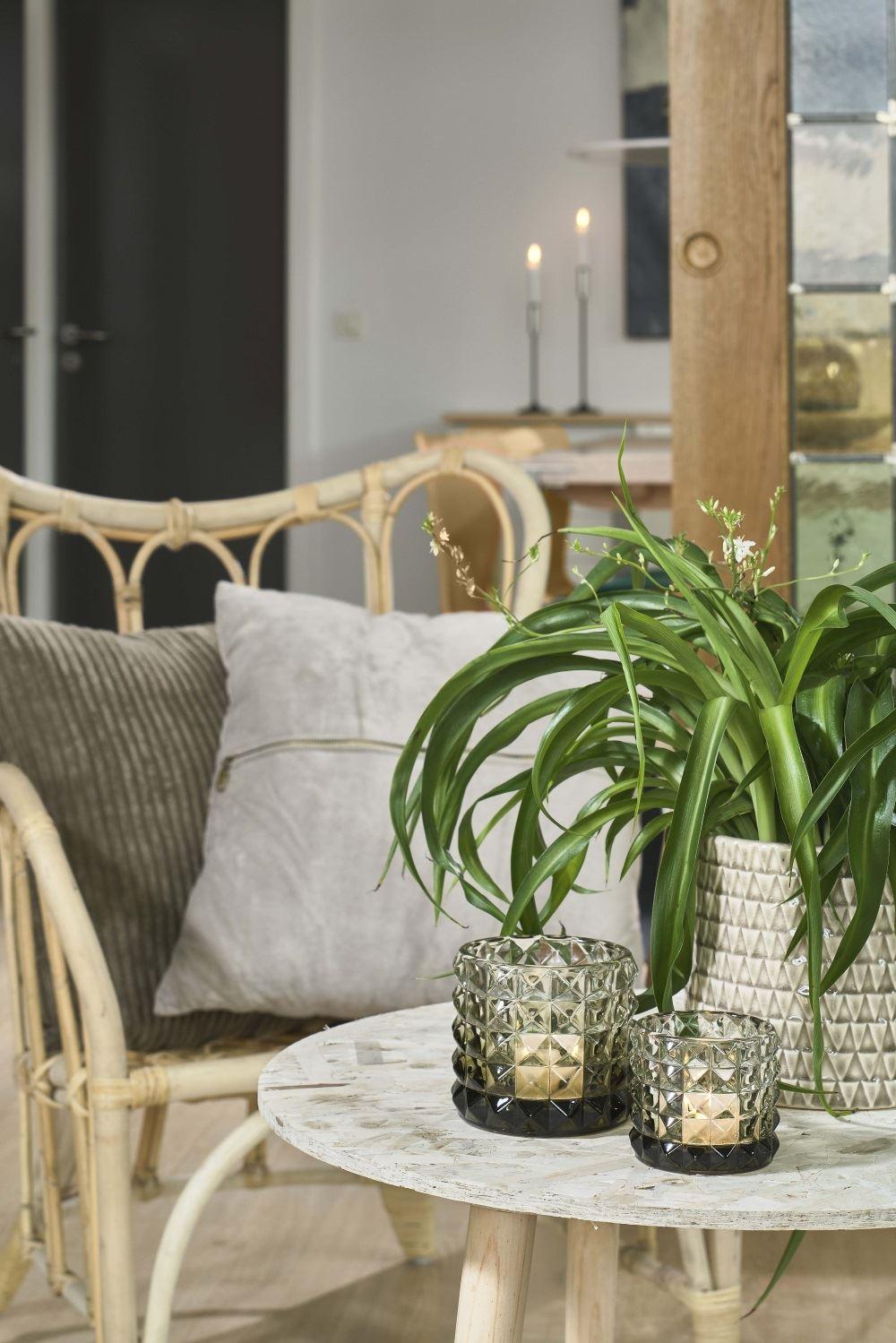 Villa-Collection-Danemark-Ceramique-marocaine-CARRELE-interieur-plante