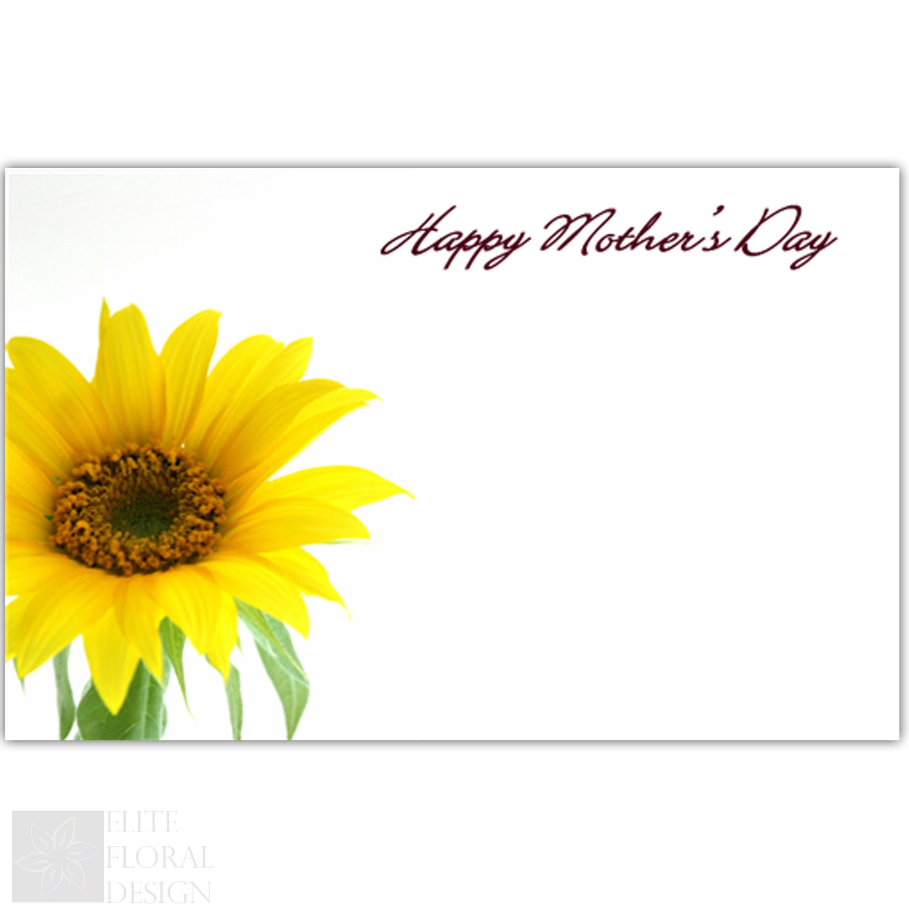 50 X Florist Flower Message Cards Birthday Annivesary Funeral