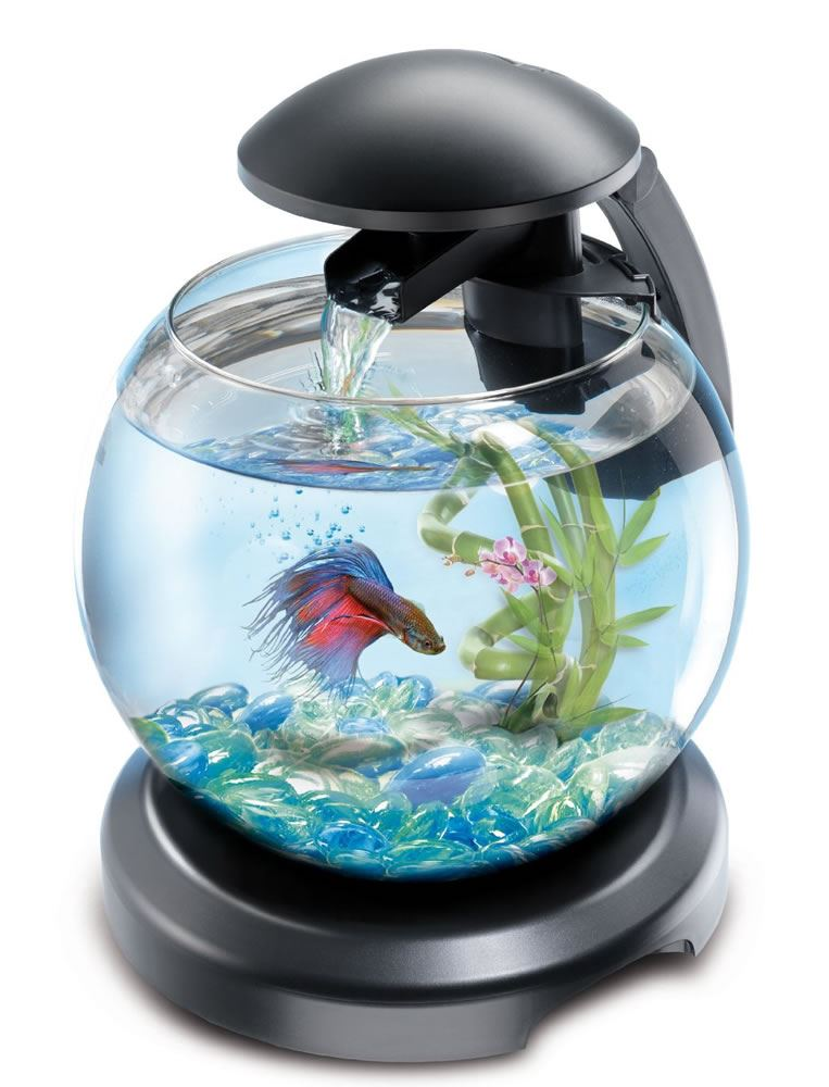 Tetra cascade globe glass fish tank with led light filter for Tetra fish tanks