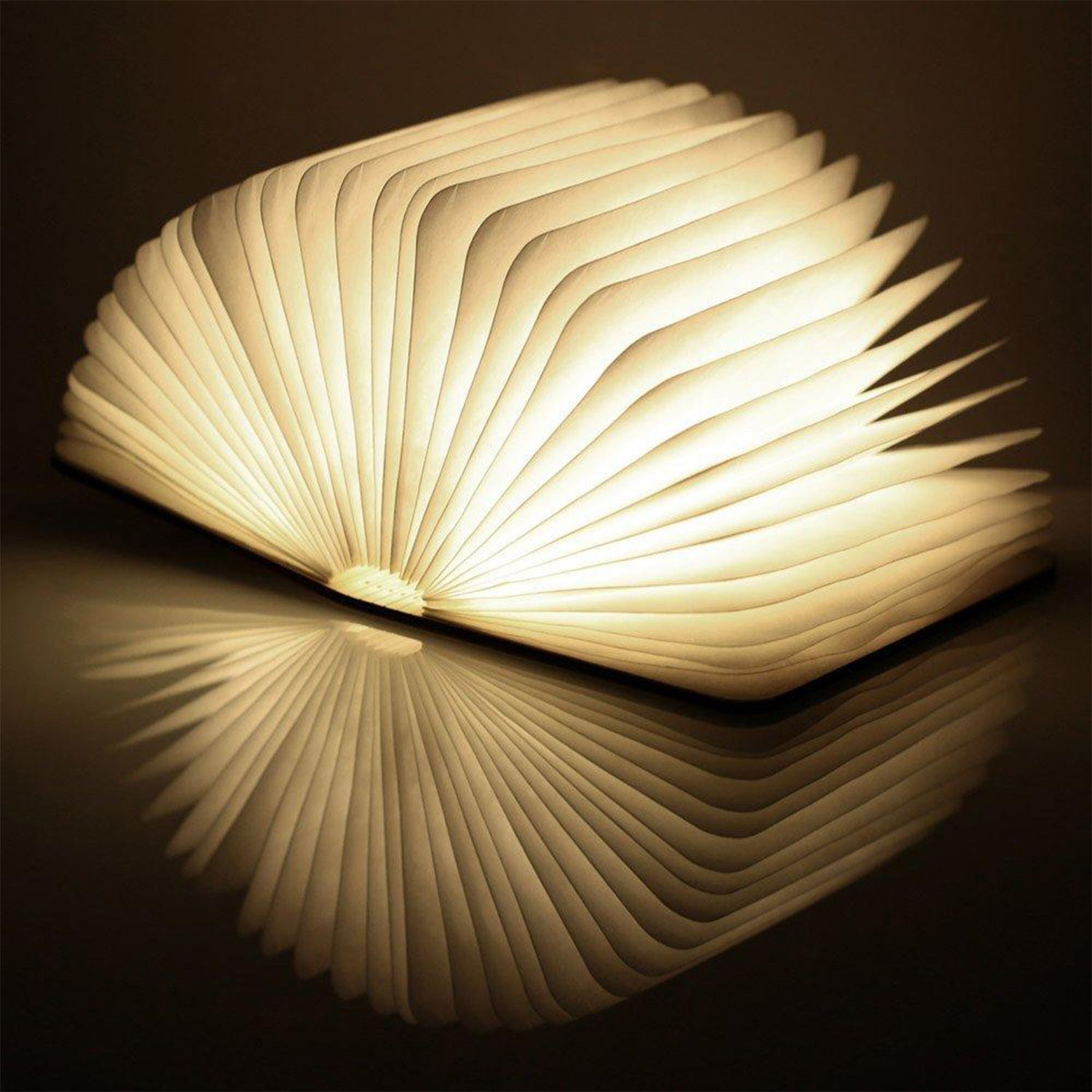 LED-Wood-Leather-Effect-Book-Desk-Lamp-Gingko-USB-Rechargeable-360-Light miniatuur 31