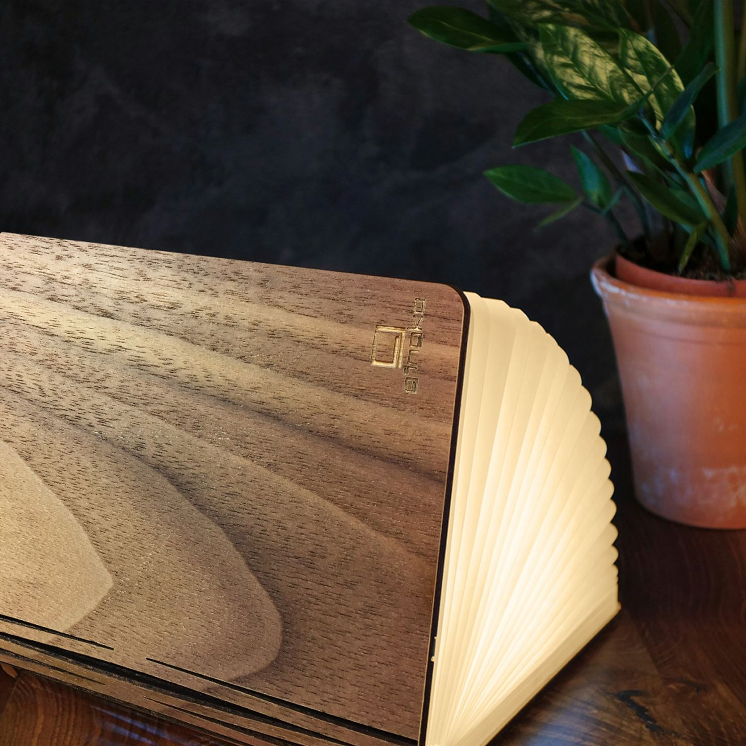 LED-Wood-Leather-Effect-Book-Desk-Lamp-Gingko-USB-Rechargeable-360-Light miniatuur 30