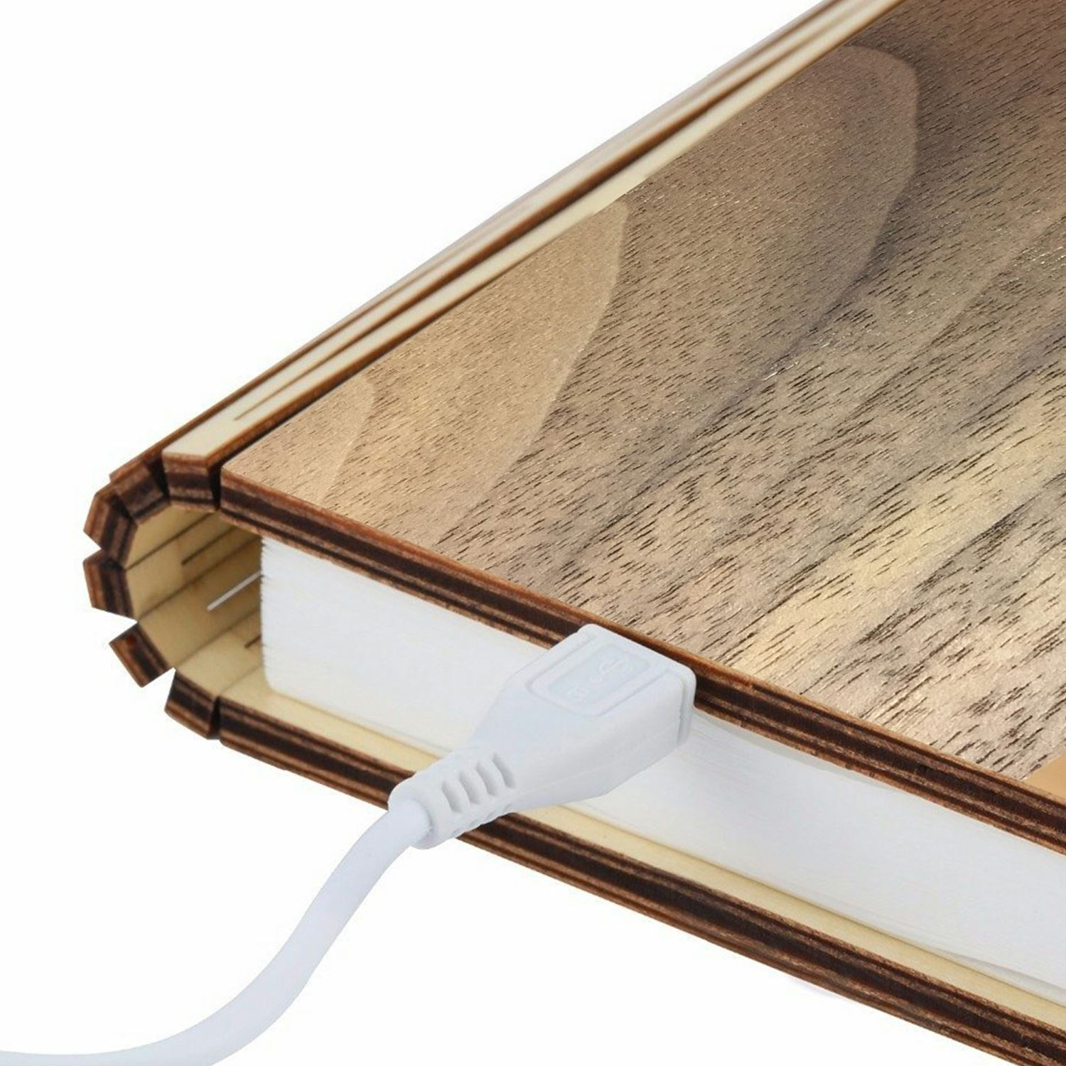 LED-Wood-Leather-Effect-Book-Desk-Lamp-Gingko-USB-Rechargeable-360-Light miniatuur 34