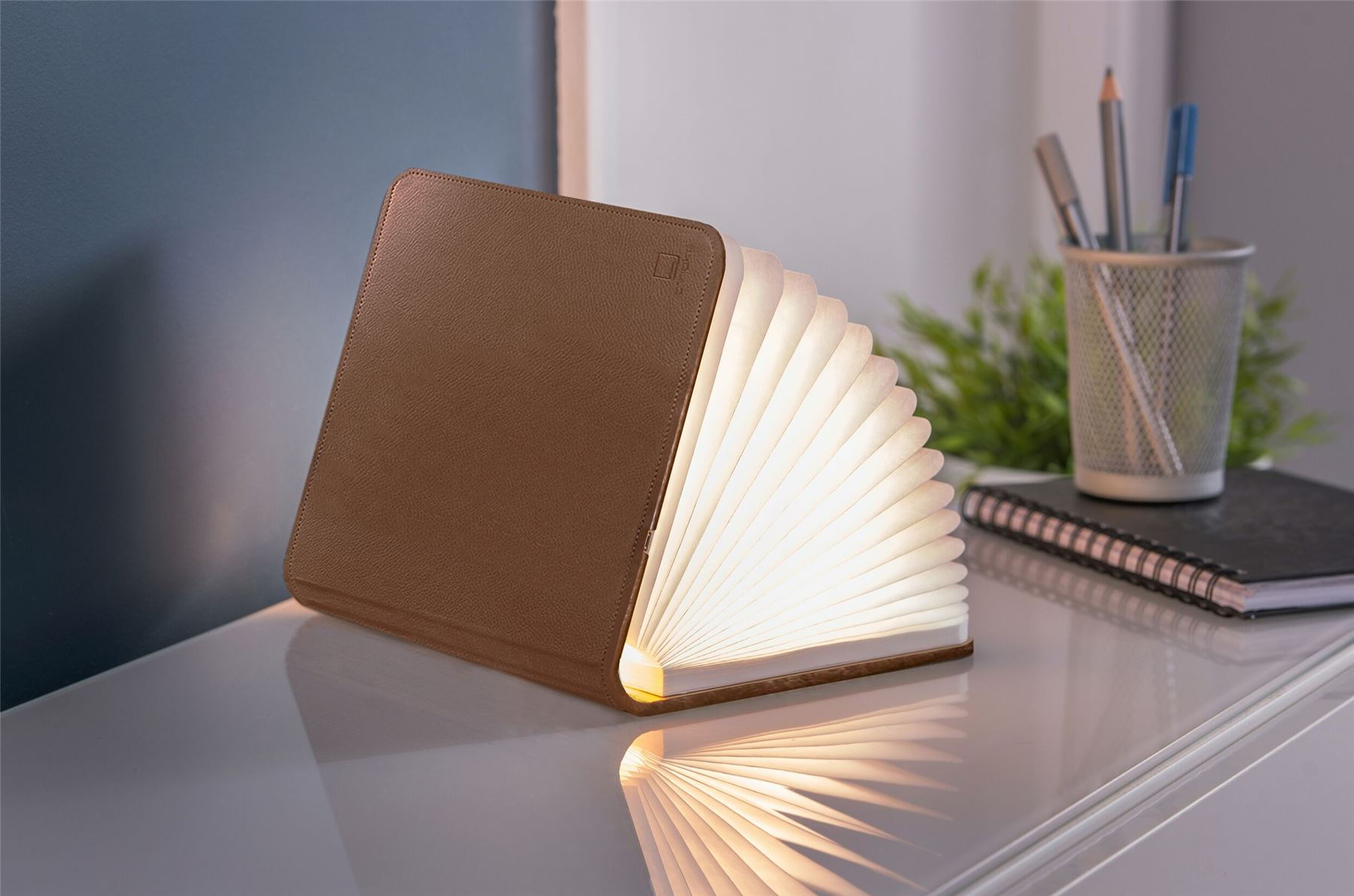 LED-Wood-Leather-Effect-Book-Desk-Lamp-Gingko-USB-Rechargeable-360-Light miniatuur 13