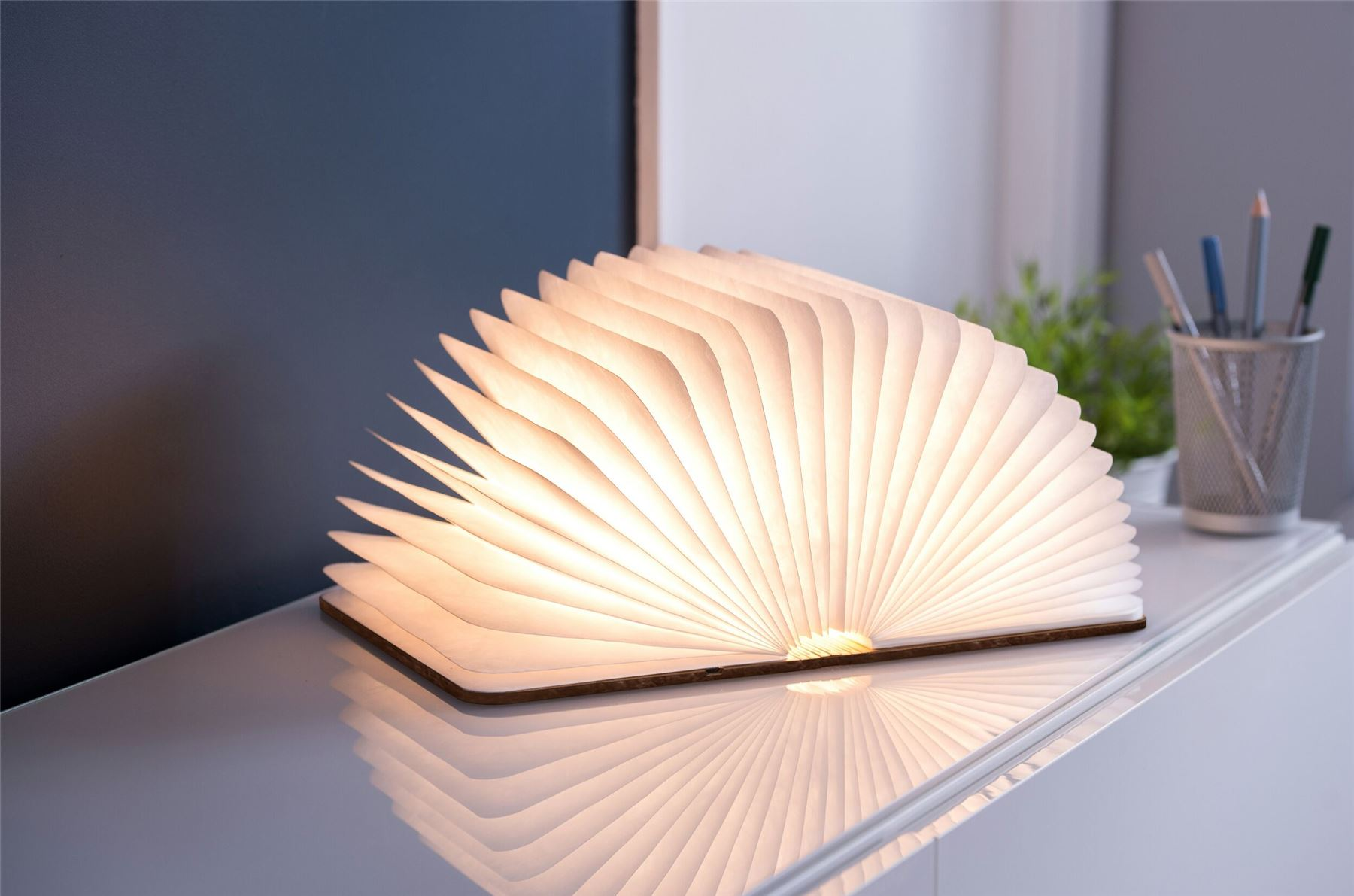 LED-Wood-Leather-Effect-Book-Desk-Lamp-Gingko-USB-Rechargeable-360-Light miniatuur 19