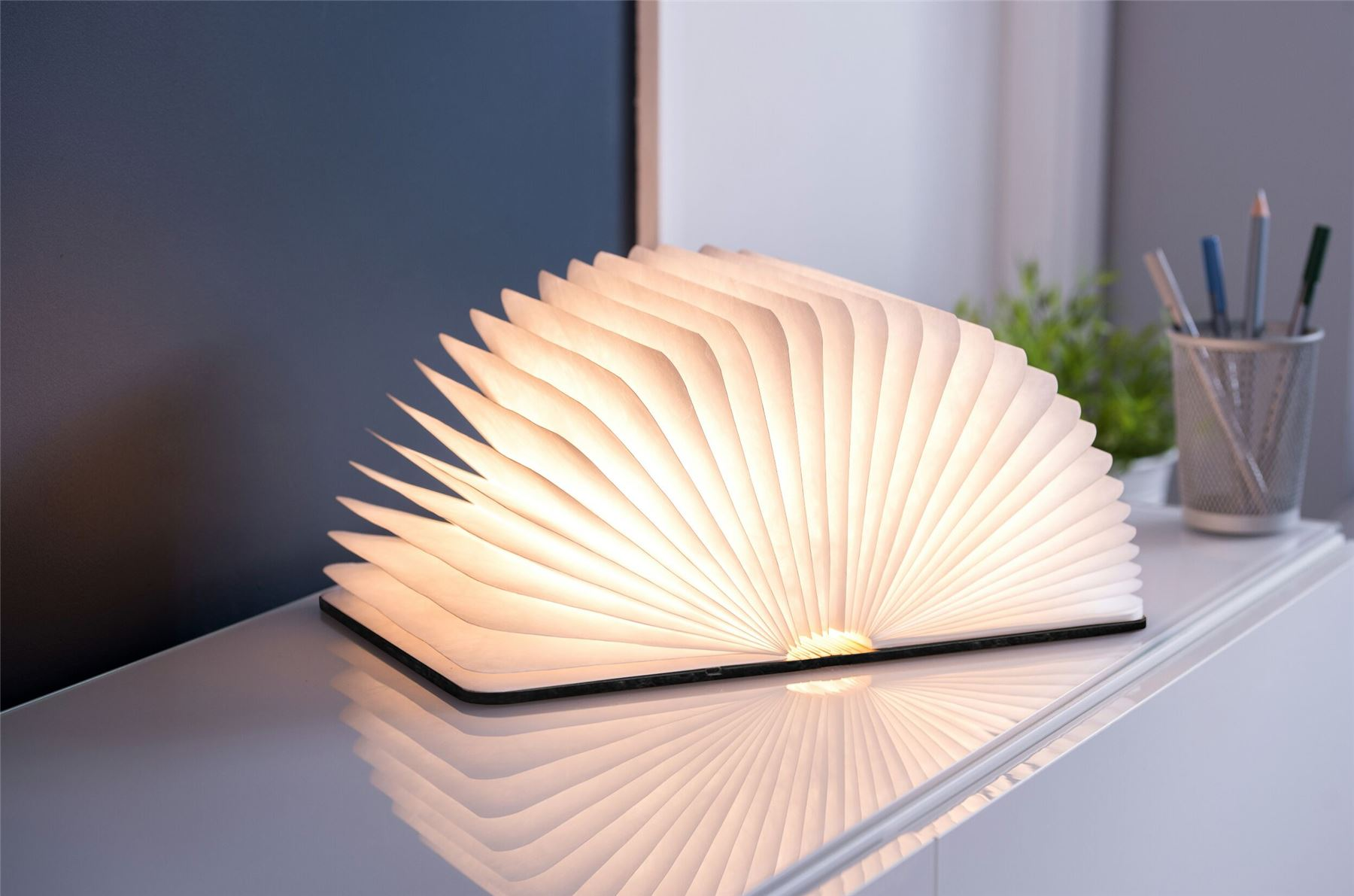 LED-Wood-Leather-Effect-Book-Desk-Lamp-Gingko-USB-Rechargeable-360-Light miniatuur 9
