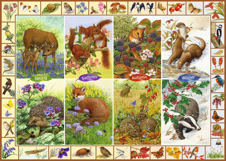 Falcon Deluxe Seasonal Wildlife Jigsaw Puzzle (1000 Pieces)