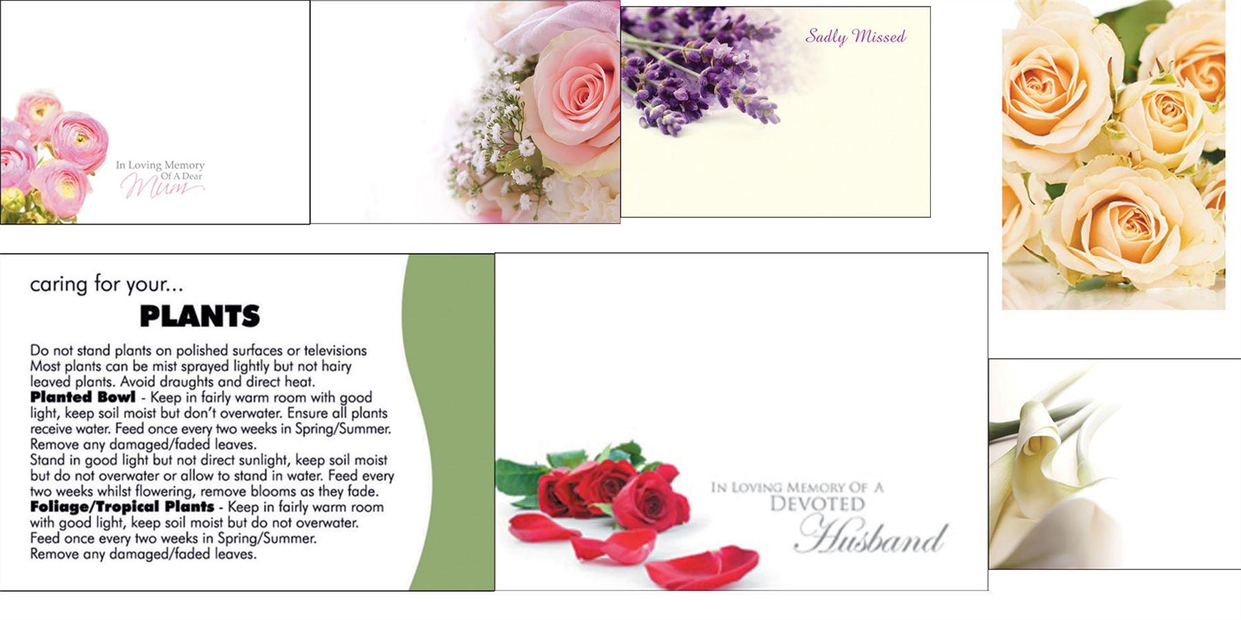 9 25 50 100 Oasis Florist Message Gift Card Plain Worded Folded