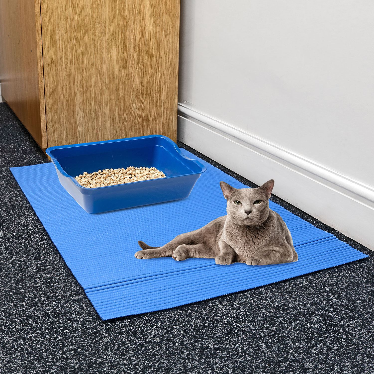 Large Cat Kitten Jumbo Litter Tray Floor Mat Paw Cleaning
