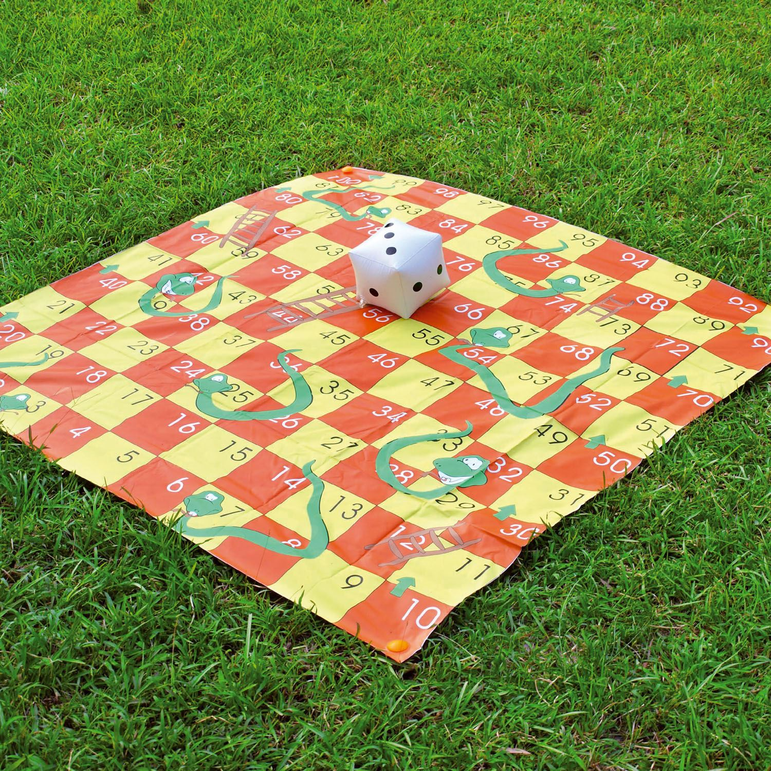 2 in 1 Giant Garden Snakes & Ladders Tangled Twister Outdoor Game