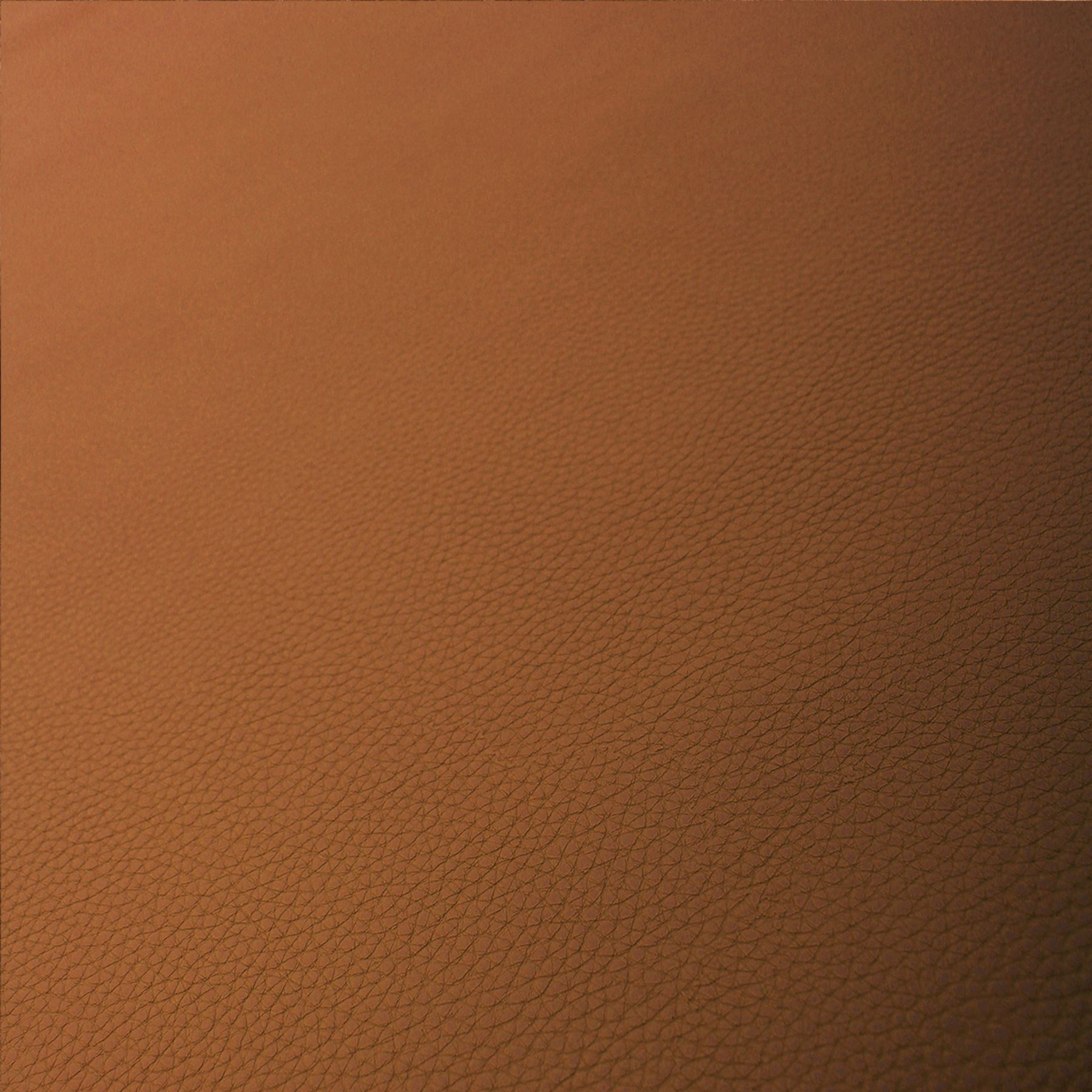 Nova-Faux-Leatherette-Artificial-Leather-Heavy-Grain-Upholstery-Vehicle-Fabric thumbnail 10