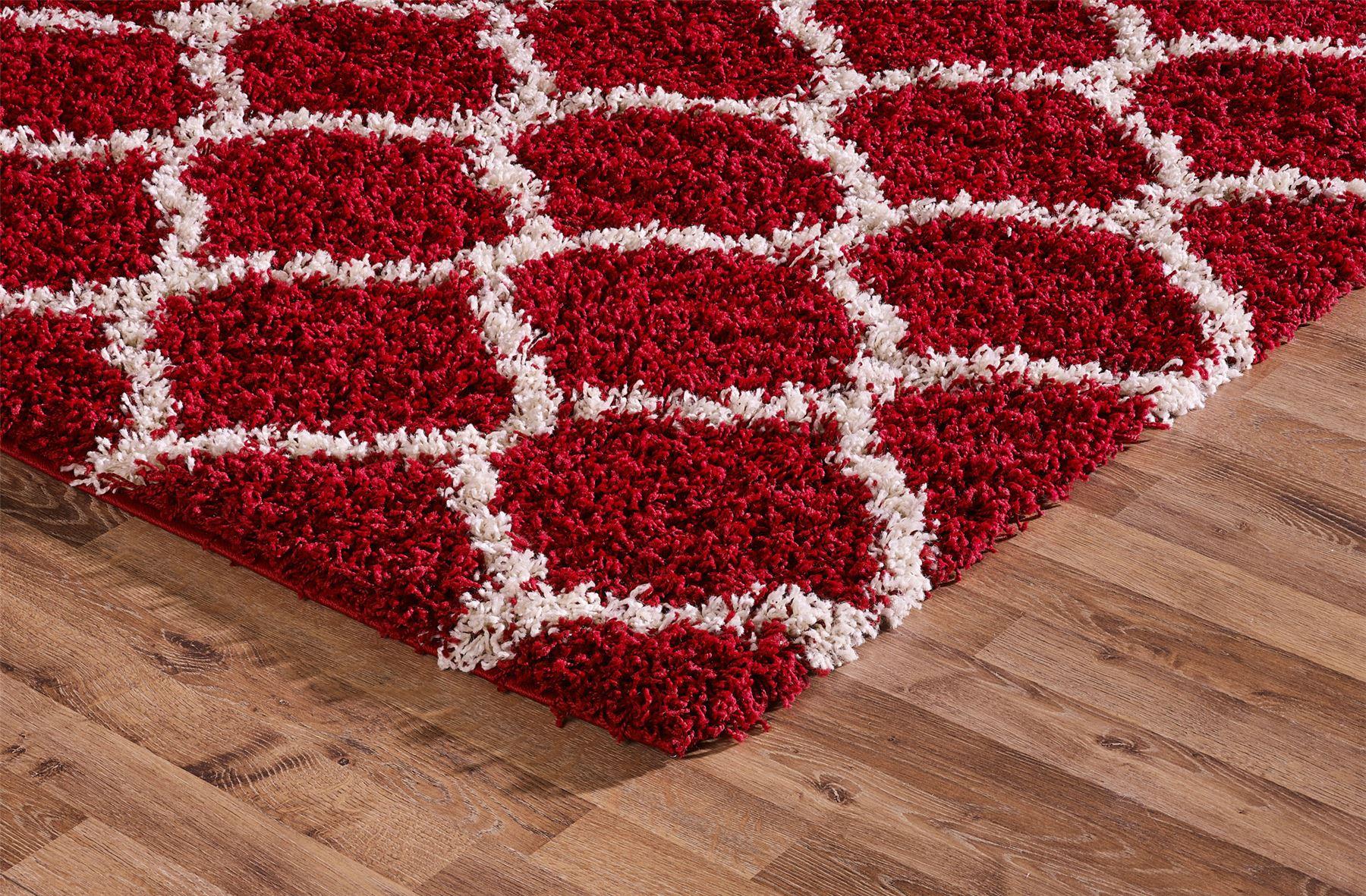 Shaggy Trellis Area Rug Fluffy Modern Carpet Contemporary