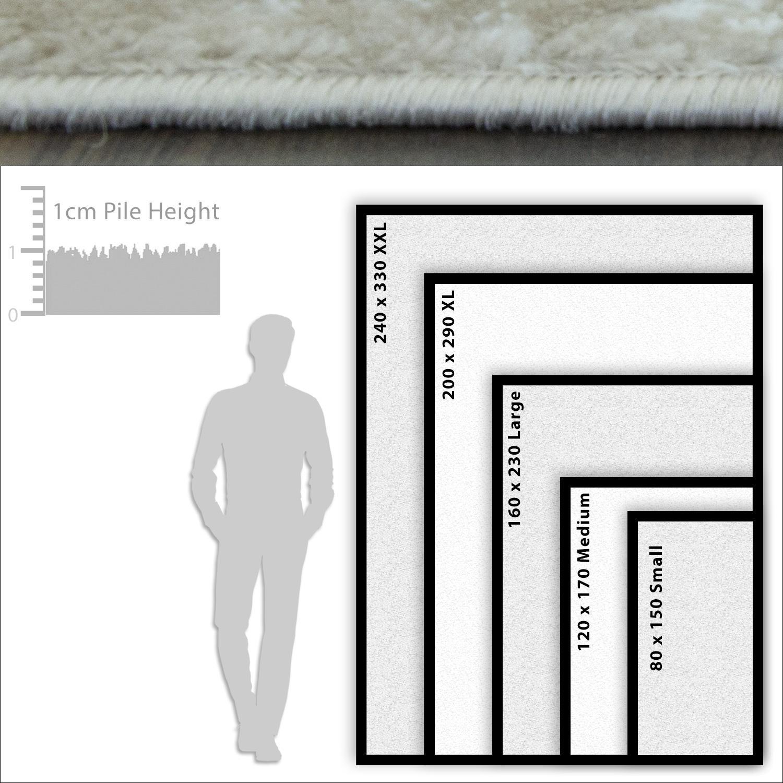 TAPPETI-Moderni-Grigio-Scuro-Grigio-Chiaro-Lounge-Tappeto-design-moderno-due-tonalita-TAPPETI miniatura 22
