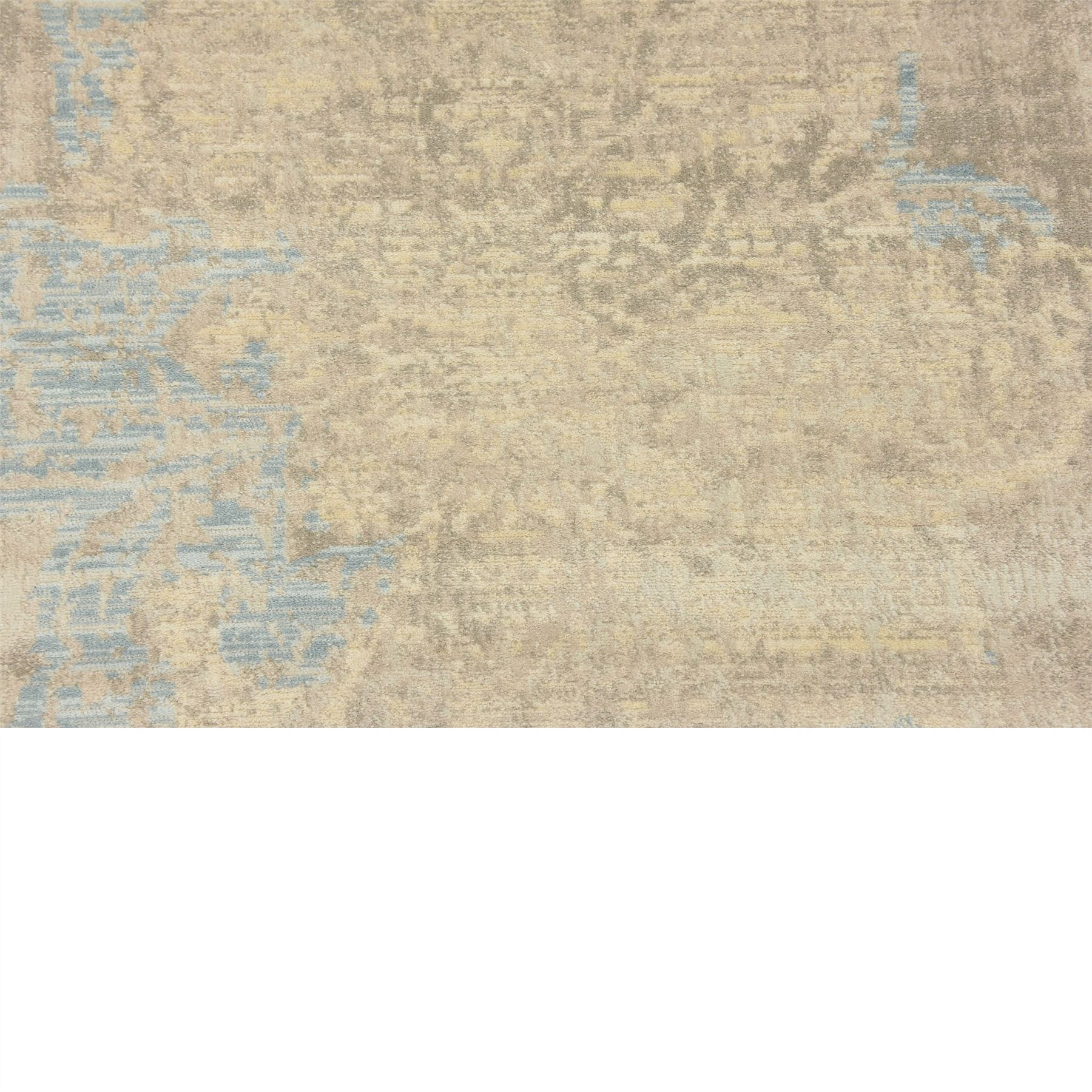 Transitional Faded Vintage Design Area Rug Traditional