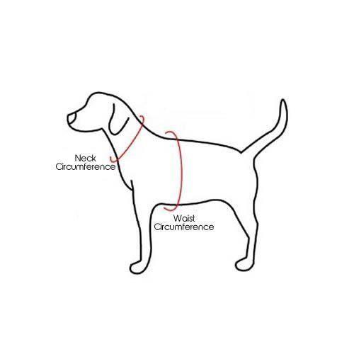 Bunty Soft Fabric Dog Puppy Harness