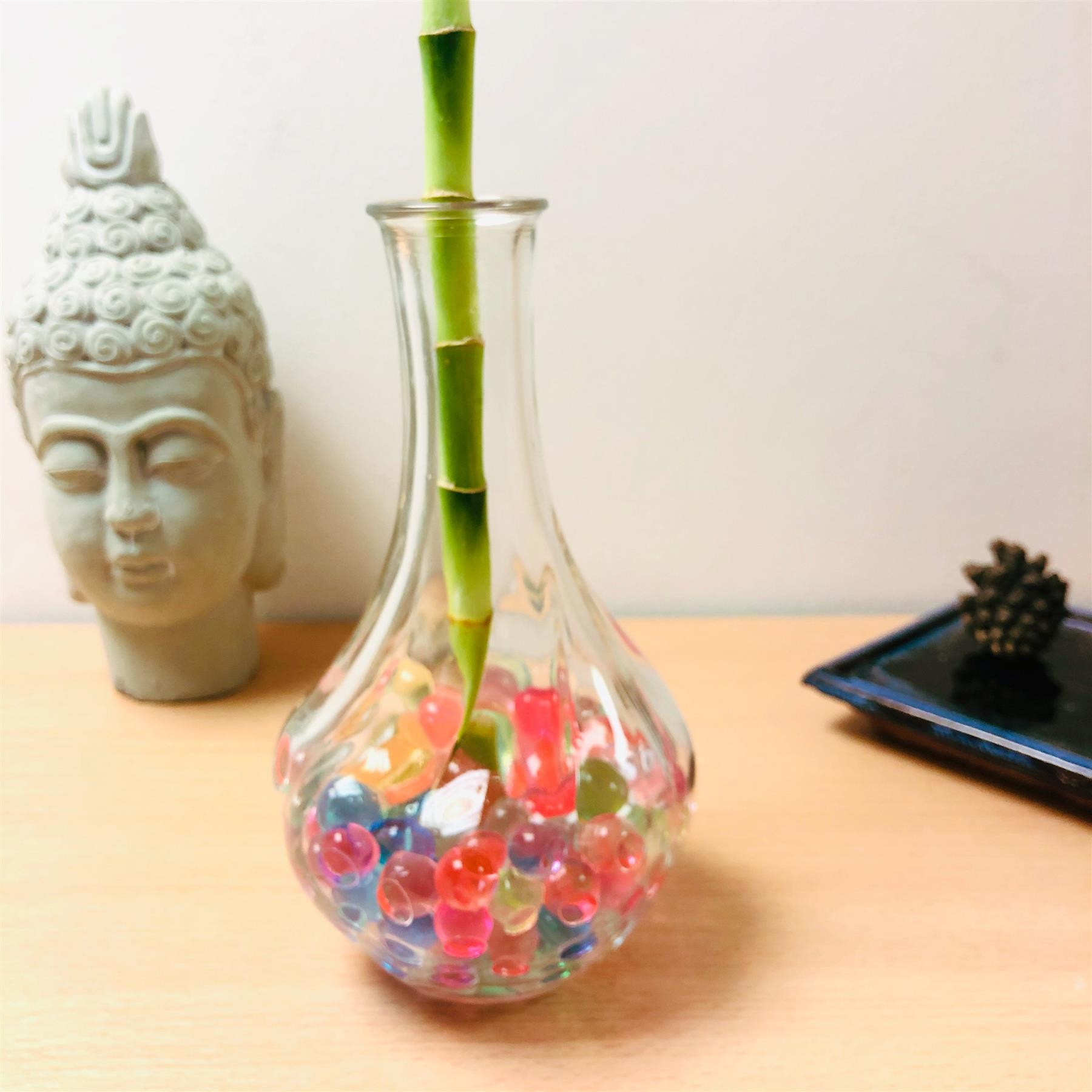 Spiral Lucky Bamboo Ribbon House Plant @Glass Vase Colourful Water Mud Feng Shui
