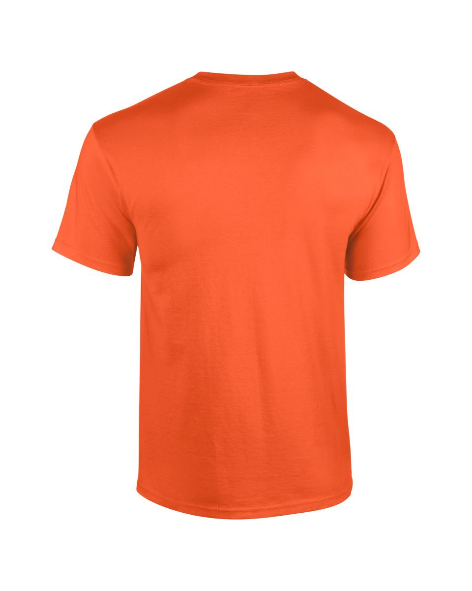 10-Pack-Plain-Gildan-Mens-Heavy-Cotton-Short-Sleeve-Plain-T-Shirt-Tee-T-Shirt thumbnail 163