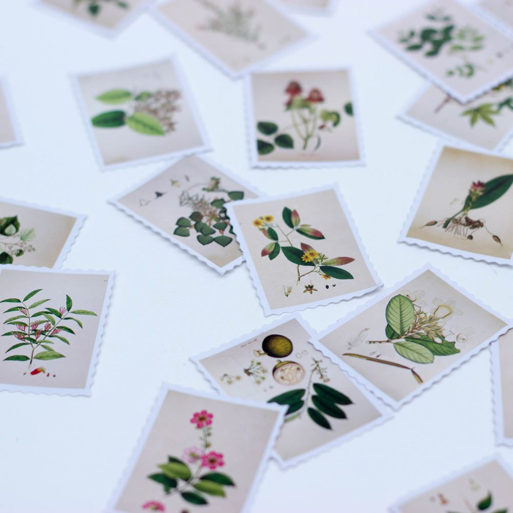 Botanical Postage Style Stamp Stickers, Craft Stickers, Scrapbooking Stickers, Craft Stickers, Gift Wrapping, Pack of 45