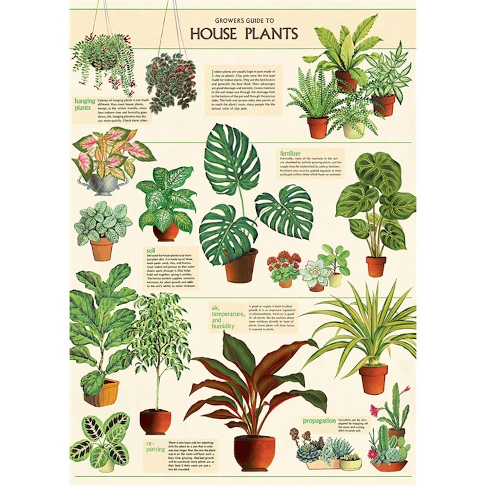 Cavallini House Plants Poster, Retro Wall Art Print, Craft Poster, Decoupage, Luxury Wrapping Sheet, Vintage Wall Decoration