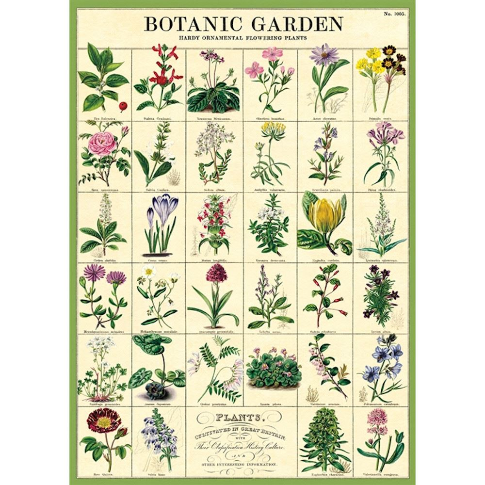 Cavallini Botanic Garden Poster, Retro Wall Art Print, Craft Poster, Decoupage, Luxury Wrapping Sheet, Vintage Wall Decoration