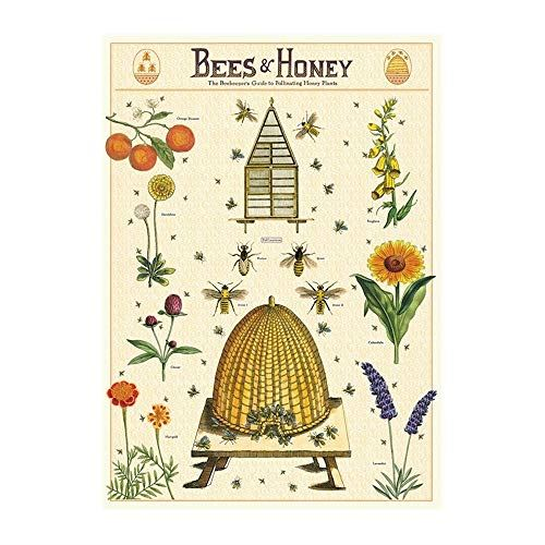Cavallini Wrap Bees And Honey Poster, Retro Wall Art Print, Craft Poster, Decoupage, Luxury Wrapping Sheet, Vintage Wall Decoration