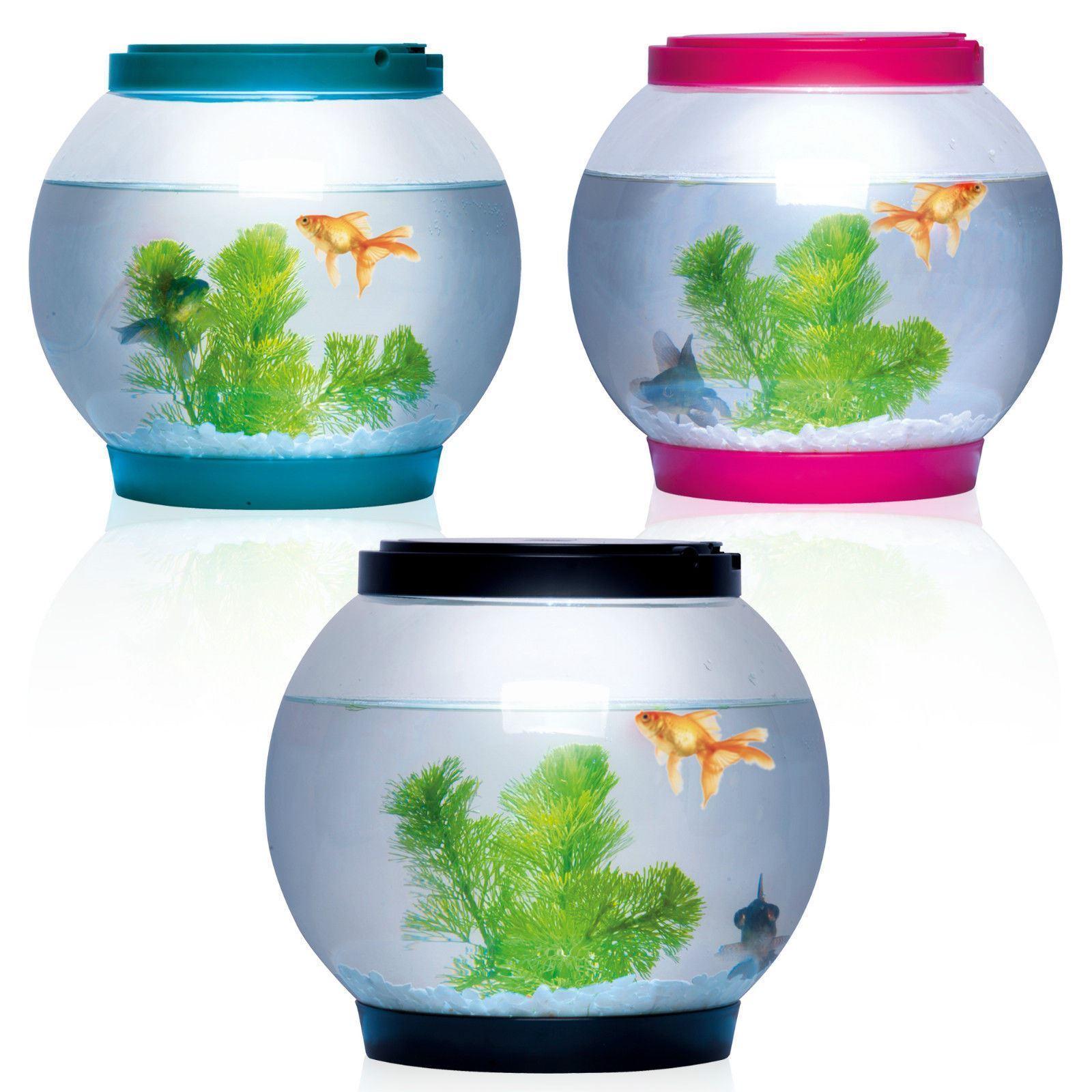 Fish aquarium in bangladesh - 5 Litre Glass Fish Tank Bowl Aquarium Water Home Office Desktop Goldfish Betta