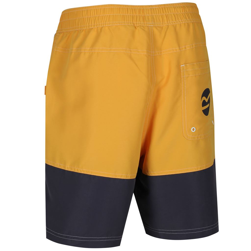 REGATTA-MENS-BRACHTMAR-II-QUICK-DRY-SUMMER-SWIMMING-SHORTS thumbnail 5