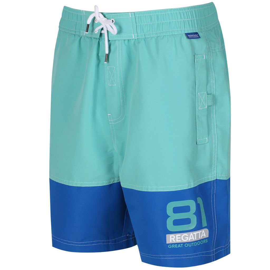 REGATTA-MENS-BRACHTMAR-II-QUICK-DRY-SUMMER-SWIMMING-SHORTS thumbnail 6