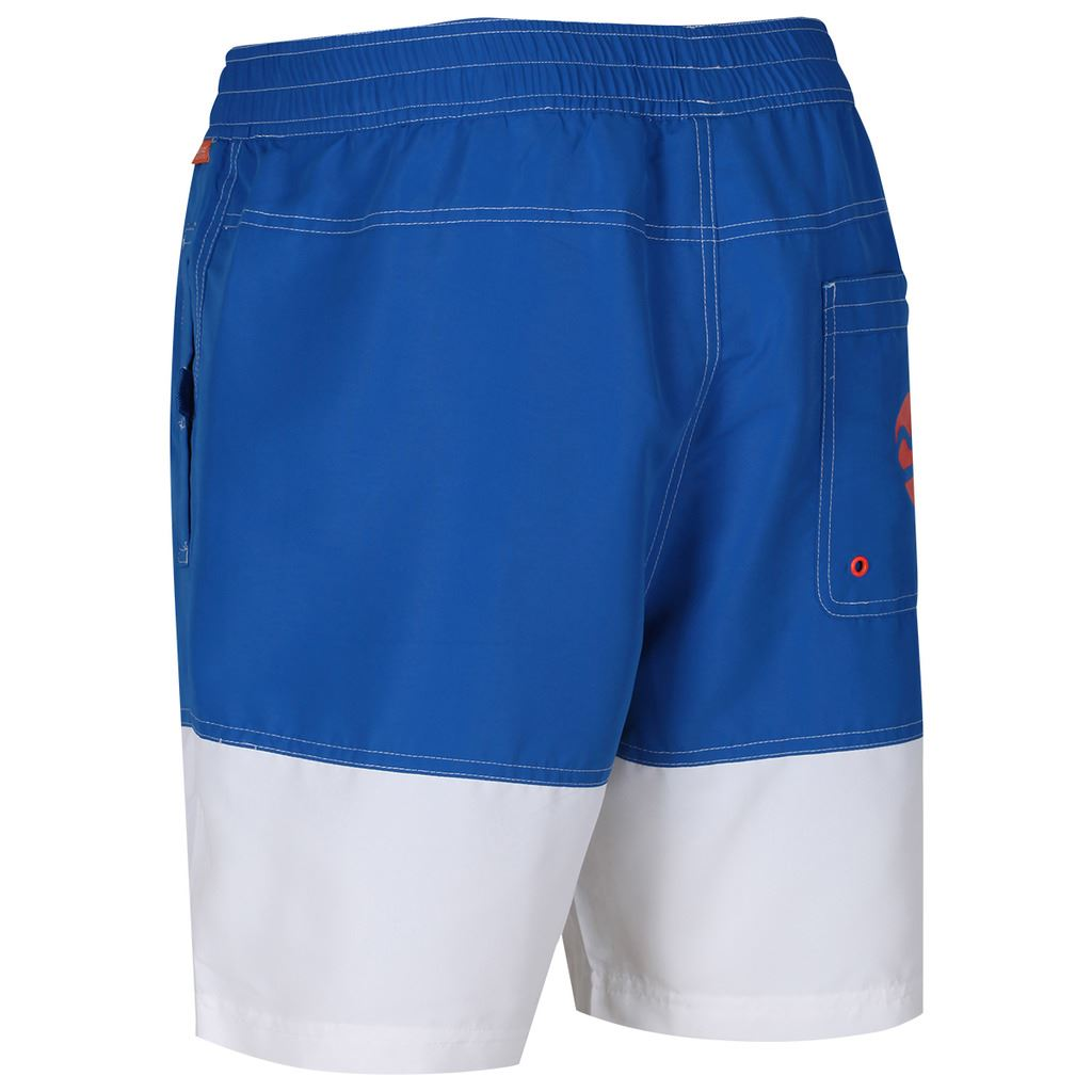 REGATTA-MENS-BRACHTMAR-II-QUICK-DRY-SUMMER-SWIMMING-SHORTS thumbnail 11