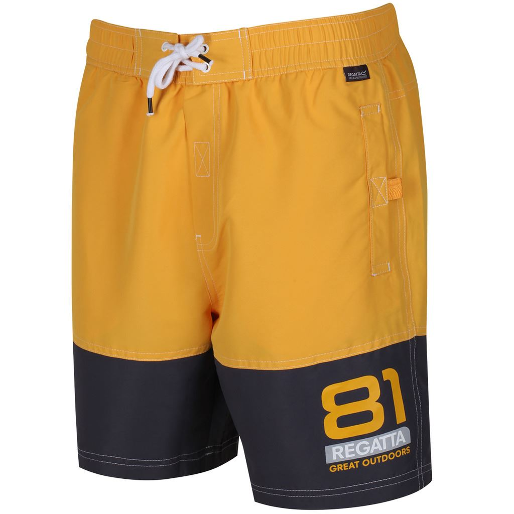 REGATTA-MENS-BRACHTMAR-II-QUICK-DRY-SUMMER-SWIMMING-SHORTS thumbnail 4