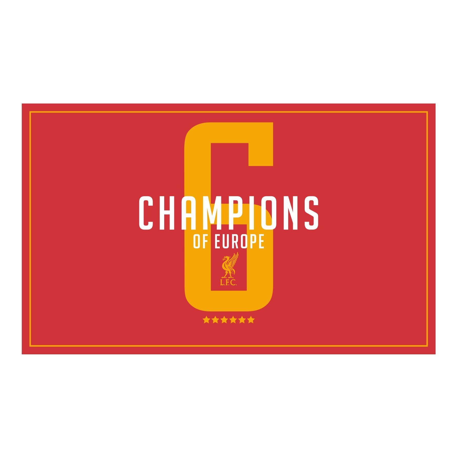 Liverpool FC UCL Champions Mug LFC Official