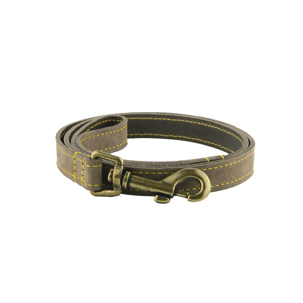 Dog-Collars-Personalised-Greyhound-Lurcher-Whippet-Deerhound-Timberwolf-Leather thumbnail 5