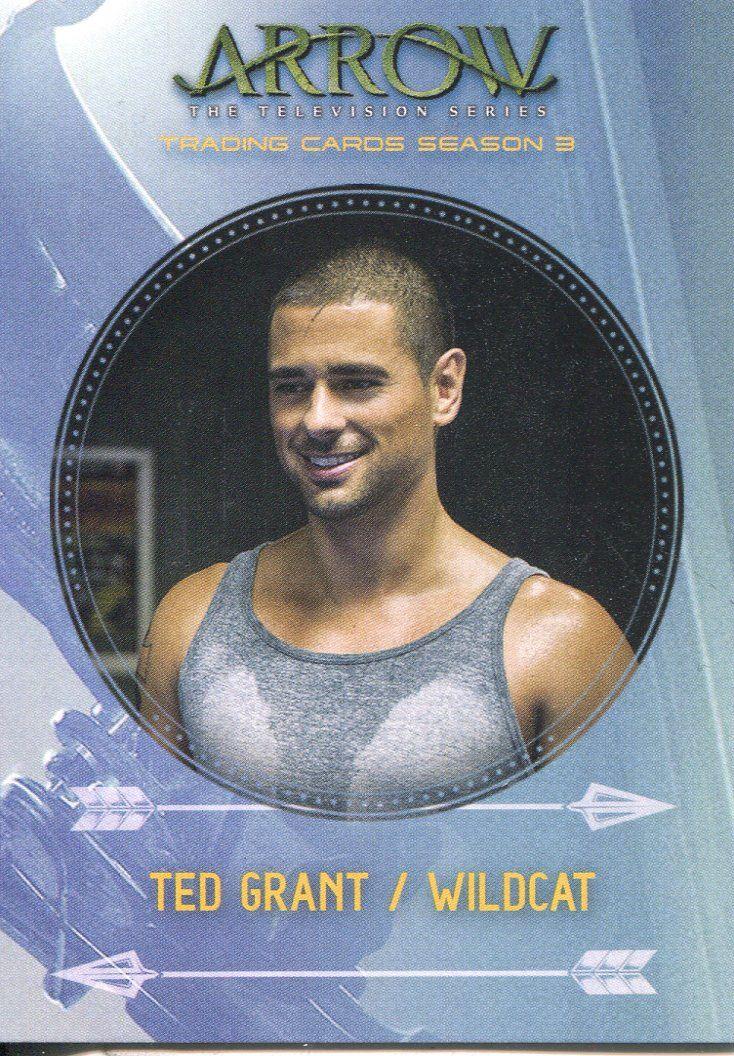 Arrow Season 3 Foil Character Bio Chase Card C3 Sin
