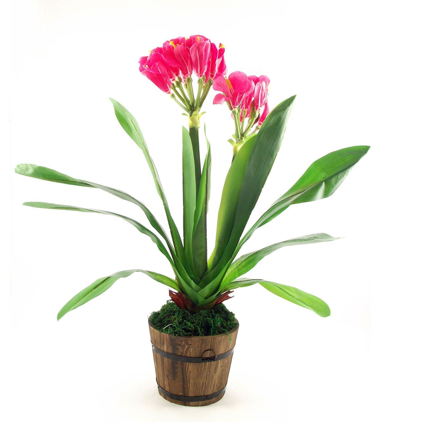 Large tropical flower plant tree home fake silk artificial bird of paradise ebay - Plant de rhubarbe a vendre ...