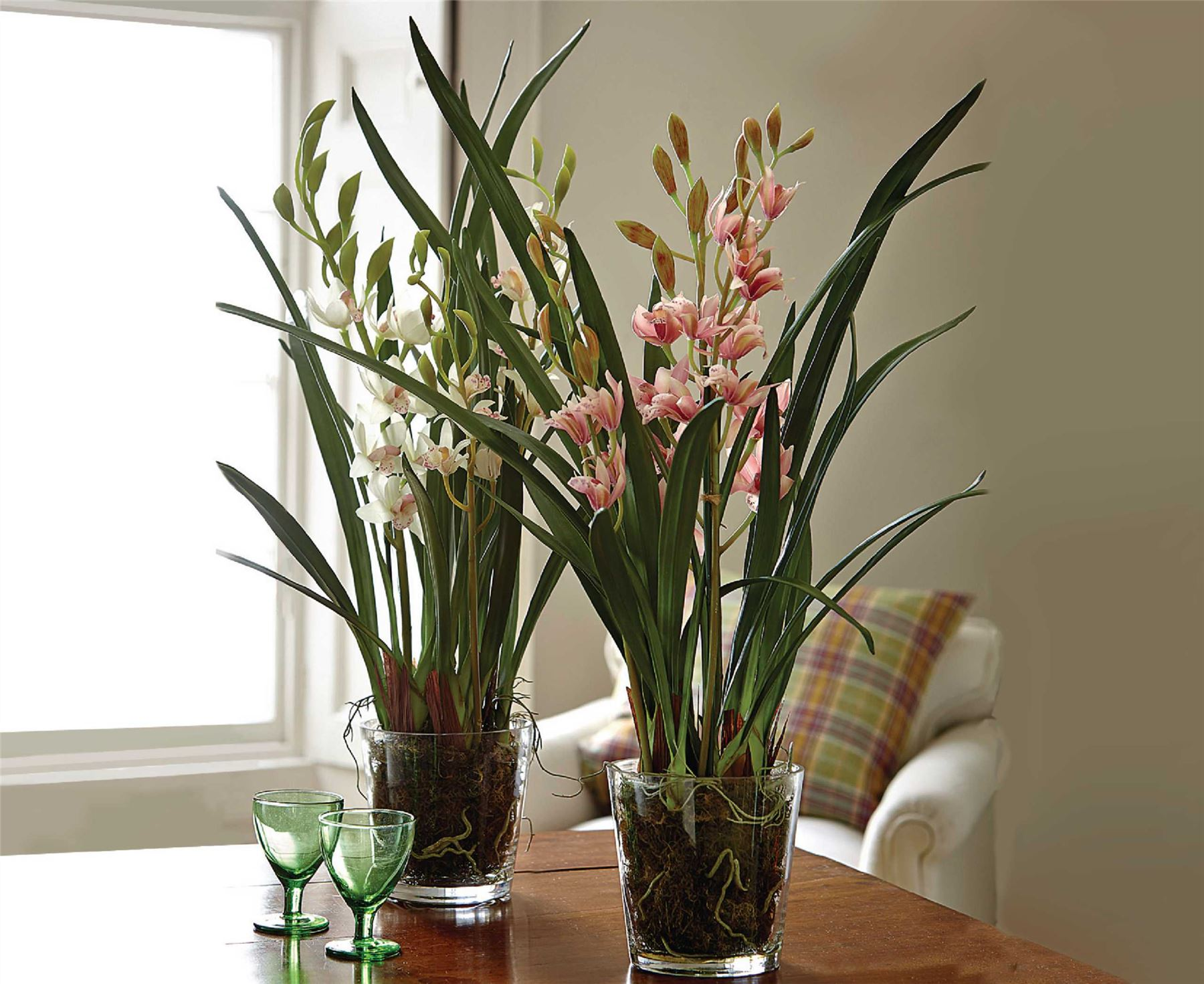 Bloom Large Ivory Cymbidium Orchid Potted Glass Planter Artificial