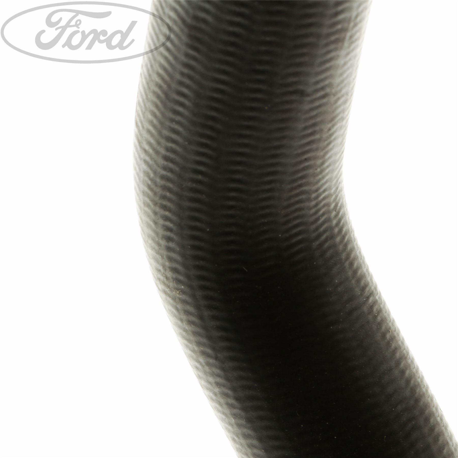 Genuine Ford Cooling System Hose