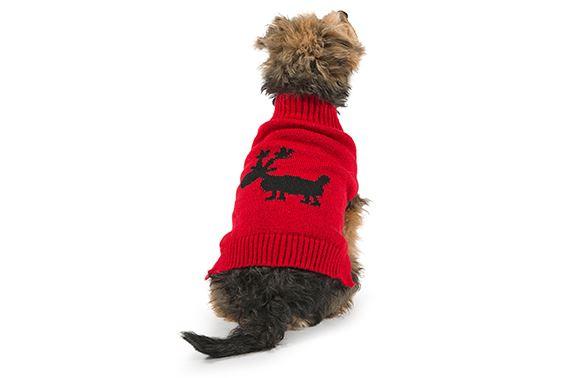 Ancol-Renne-Flocon-De-Neige-Tricot-Pull-Noel-Noel-Festif-Nouveaute-Chien-Pull