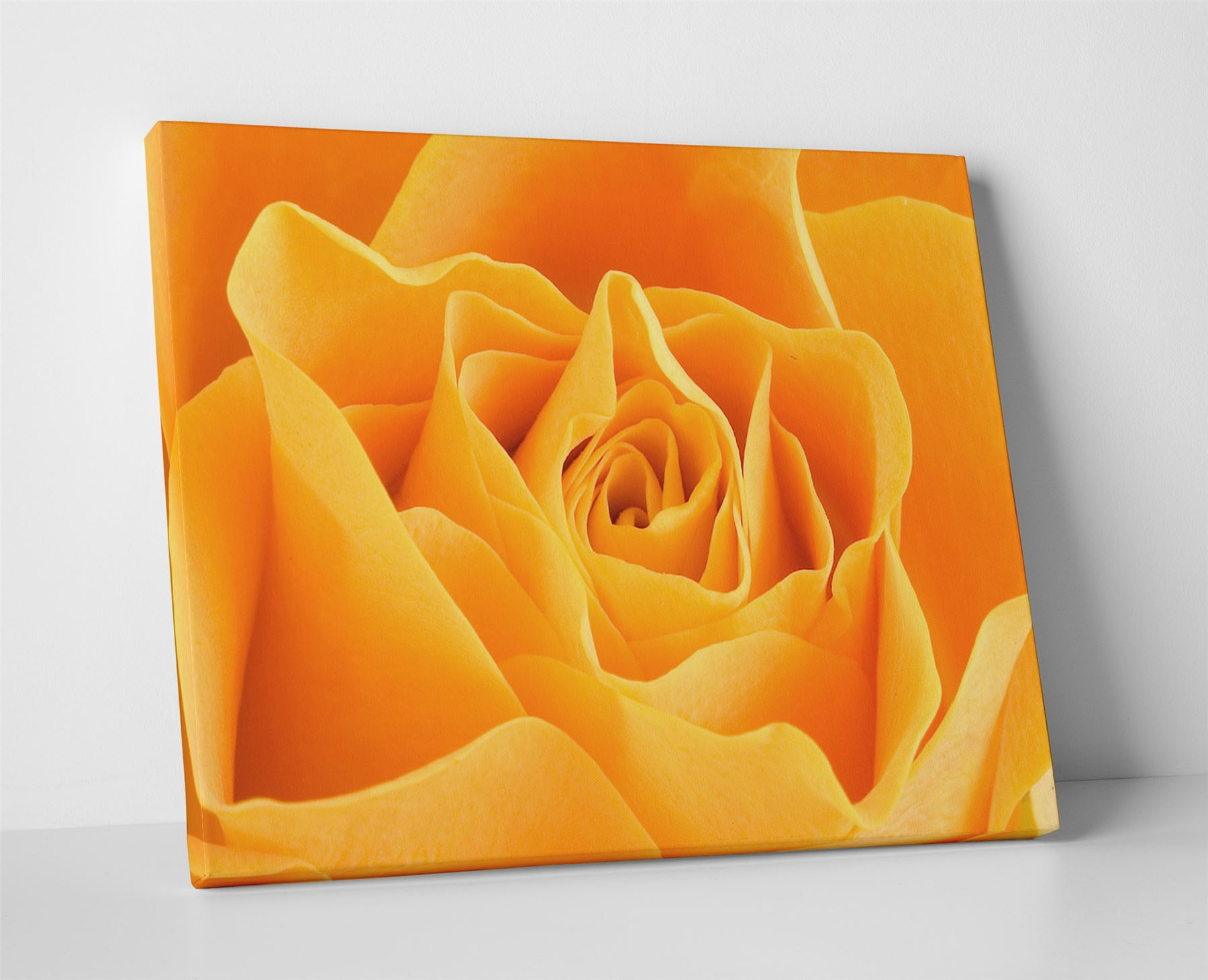 Yellow Rose Large Box Canvas Print Wall Art - Floral Roses Flower | eBay