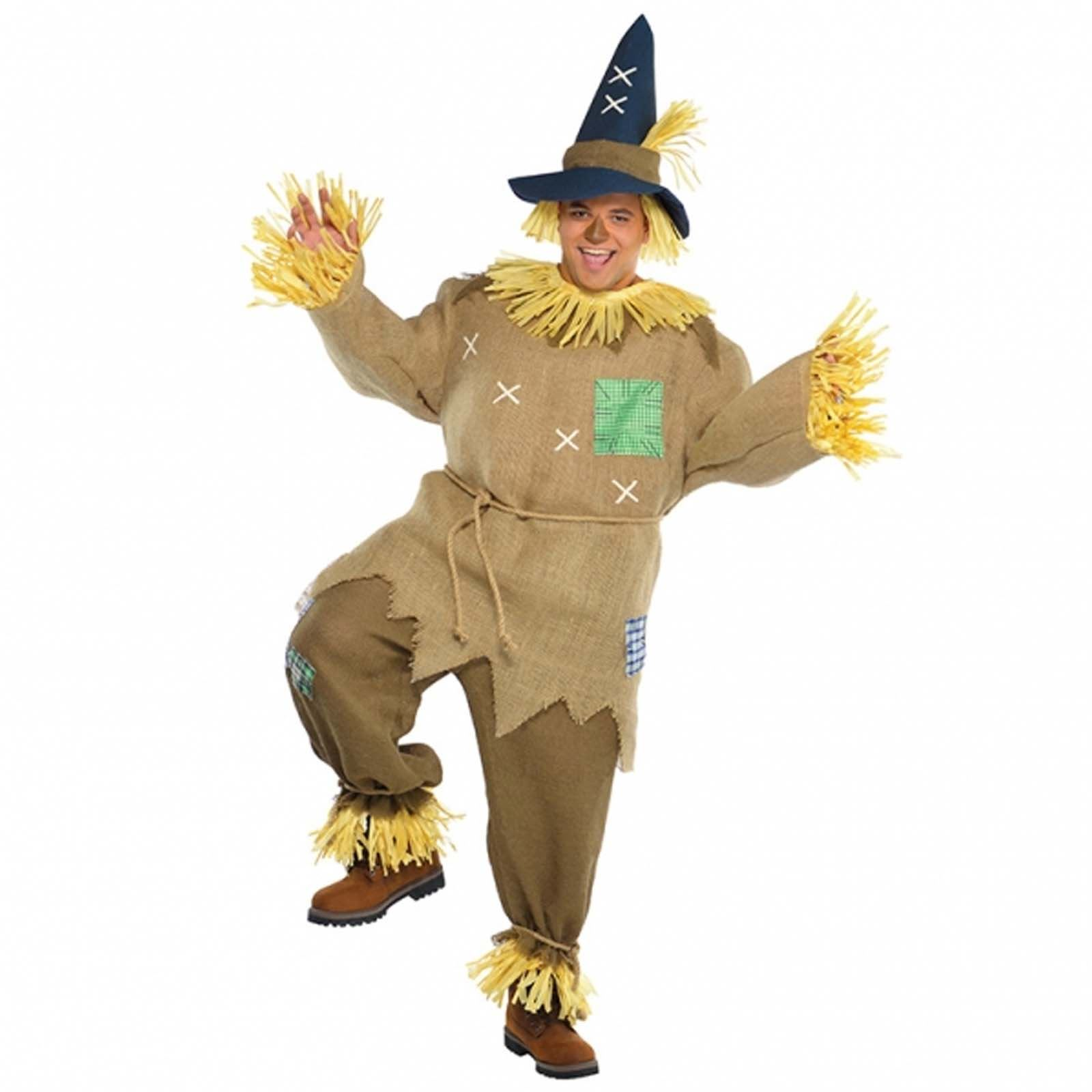 Wizard of oz plus size fancy dress