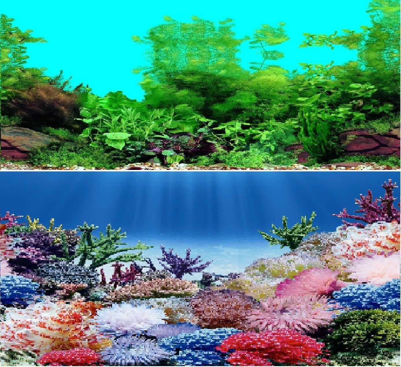 24 double sided aquarium background backdrop fish tank reptile vivarium marine ebay. Black Bedroom Furniture Sets. Home Design Ideas