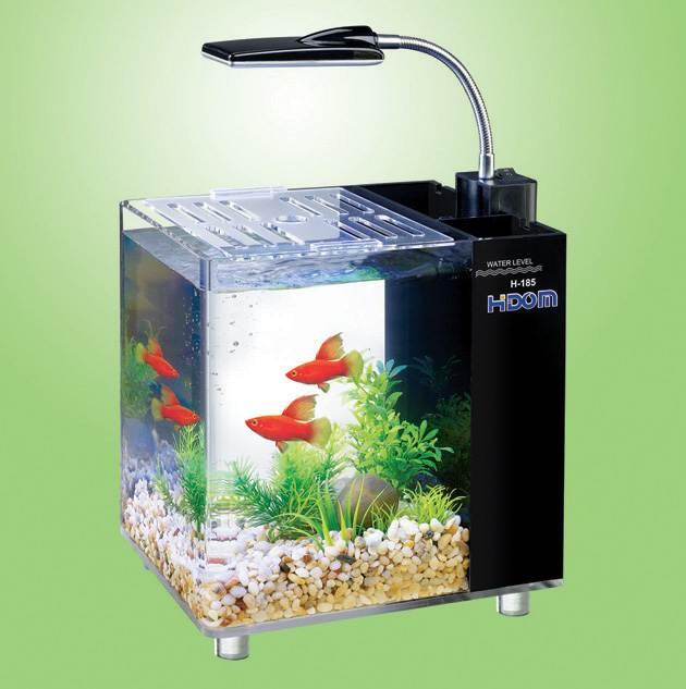 office desk aquarium. Perfect Aquarium Hidom Aquarium Fish Tank 10 And 15 Litre Mini Office Desktop Light Filter  Heater Throughout Desk I