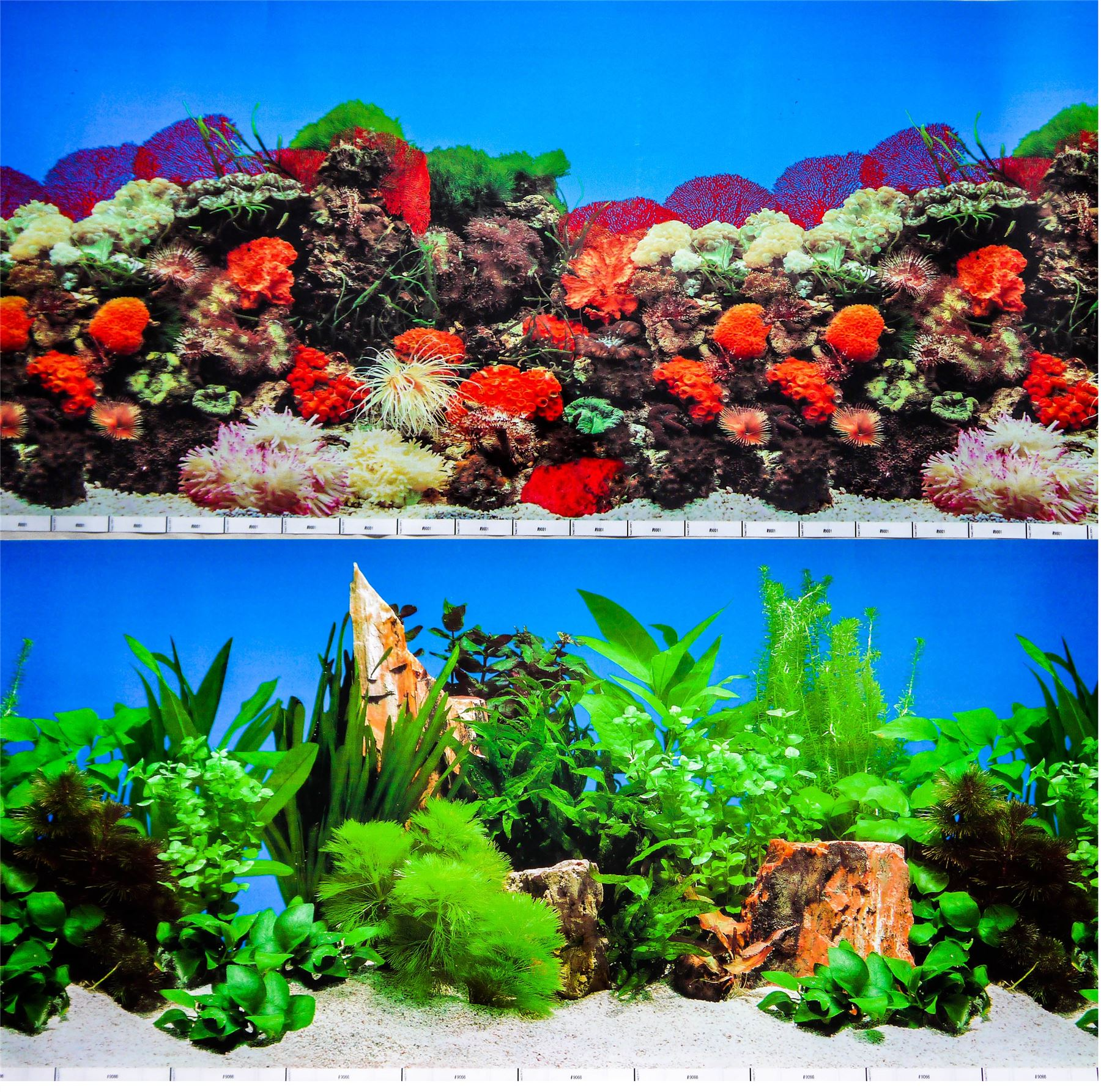Aquarium Fish Tank Background Double Sided 19 50cm High 2 To 10 Ft Lengths Ebay