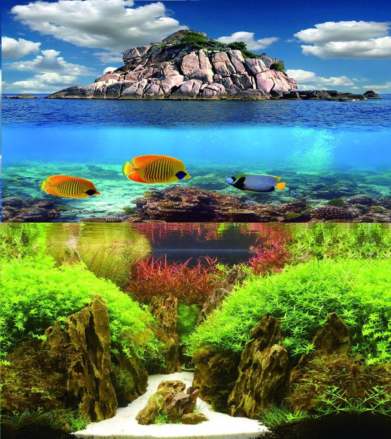 31 Double Sided Aquarium Background Backdrop Fish Tank Reptile Vivarium Marine